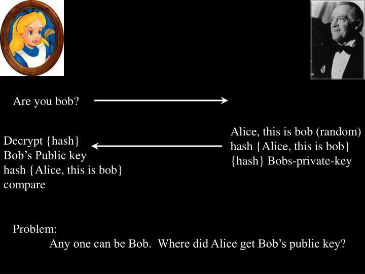 Are you bob?