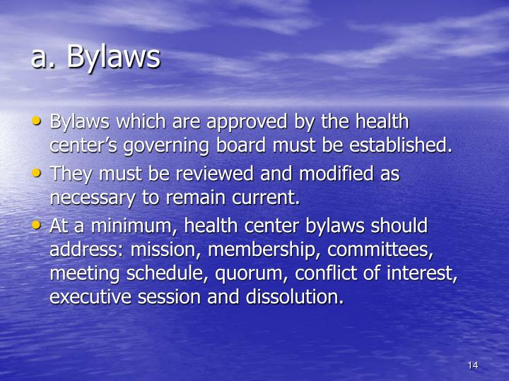a. Bylaws
