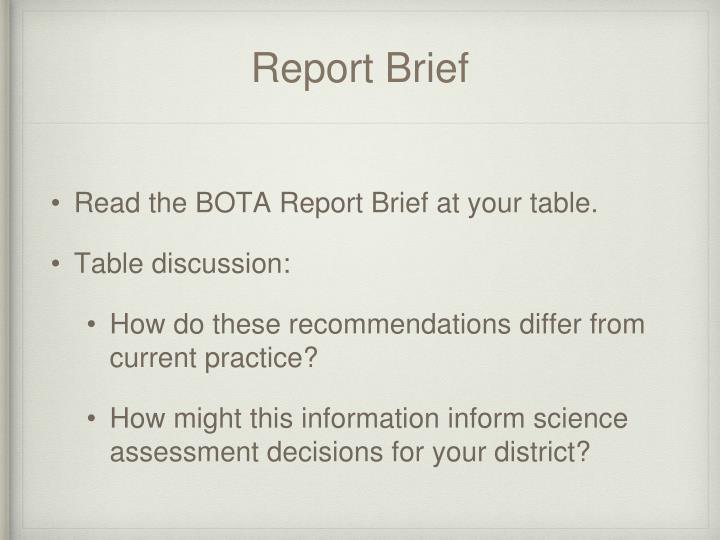 Report Brief