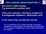 pain during menstruation 2