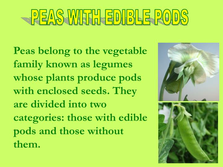 PEAS WITH EDIBLE PODS