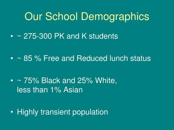 Our school demographics