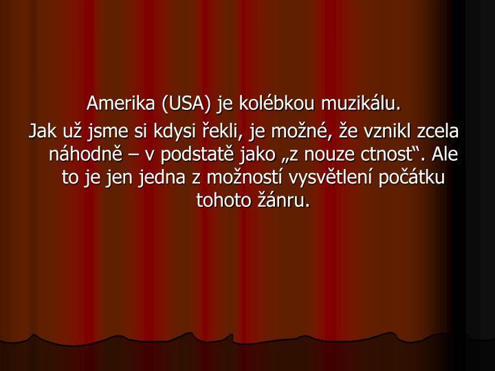 Amerika (USA) je kolébkou muzikálu.