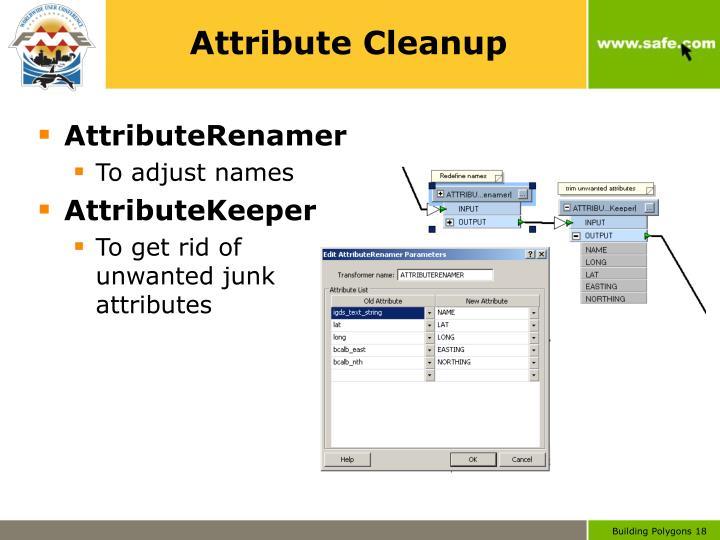 Attribute Cleanup