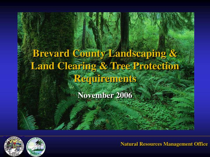 brevard county landscaping land clearing tree protection requirements n.
