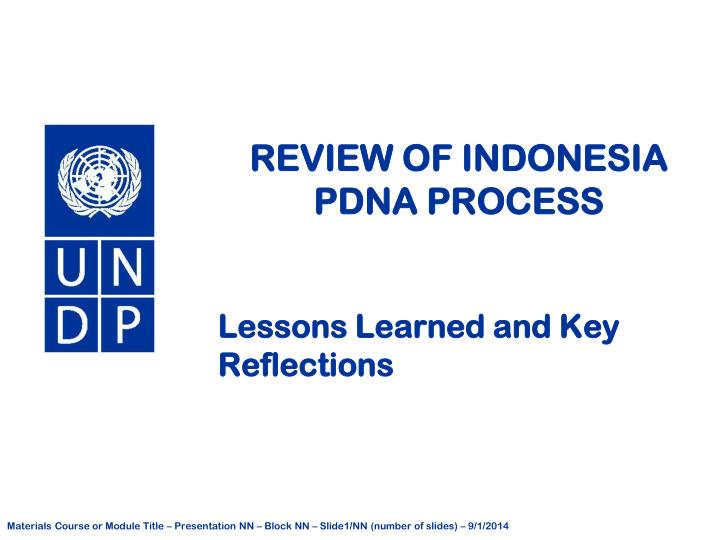 review of indonesia pdna process n.
