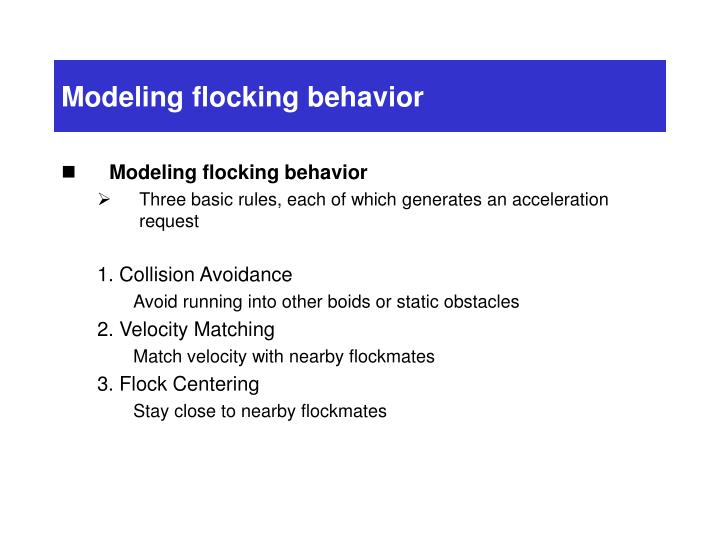 Modeling flocking behavior