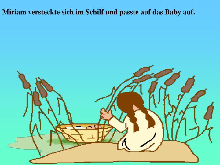 Miriam versteckte sich im Schilf und passte auf das Baby auf.