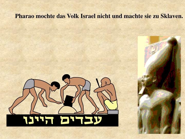 Pharao mochte das Volk Israel nicht und machte sie zu Sklaven.