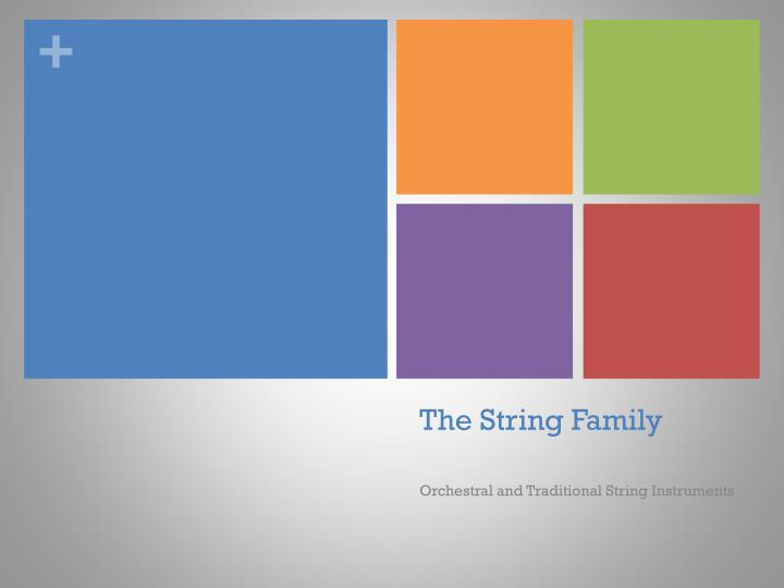 the string family n.