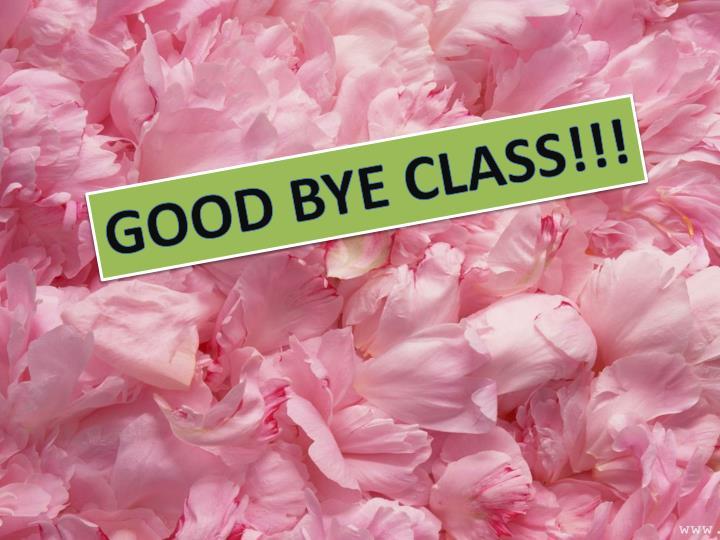 GOOD BYE CLASS!!!