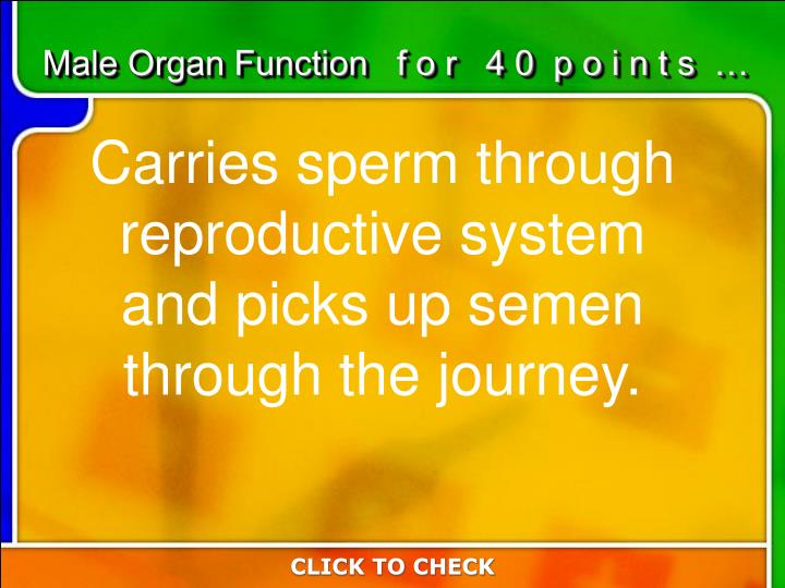 Male Organ Function   f o r   4 0  p o i n t s  …
