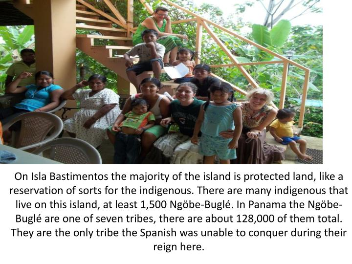 On Isla Bastimentos the majority of the island is protected land, like a reservation of sorts for the indigenous. There are many indigenous that live on this island, at least 1,500 Ngöbe-Buglé. In Panama the Ngöbe-Buglé are one of seven tribes, there are about 128,000 of them total. They are the only tribe the Spanish was unable to conquer during their reign here.