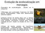 evolu o da ecolocaliza o em morcegos