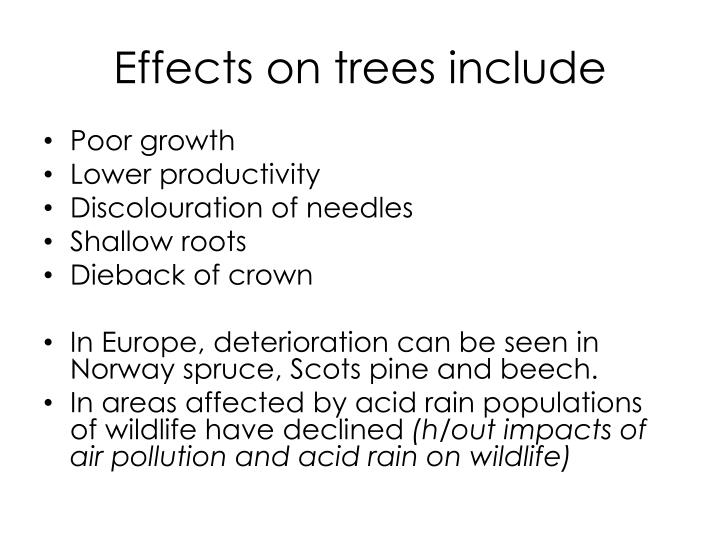 Effects on trees include