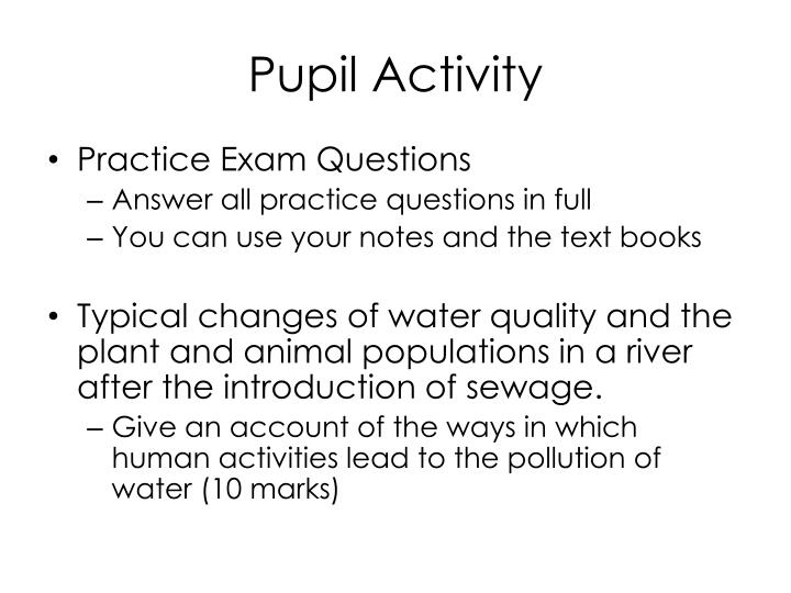 Pupil Activity