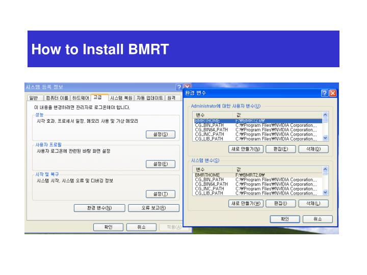How to Install BMRT