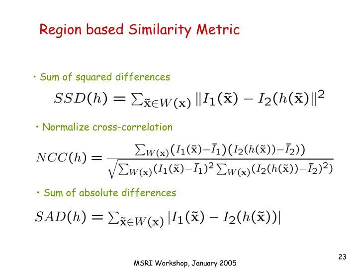 Region based Similarity Metric