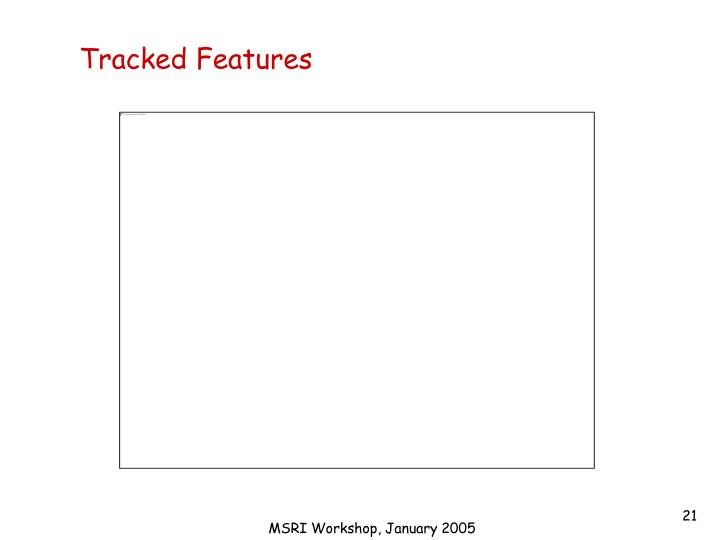 Tracked Features