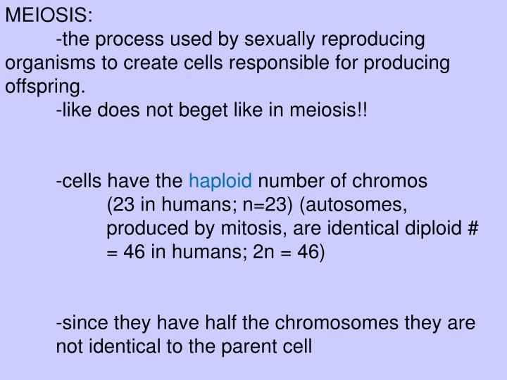 Like begets like asexual reproduction video
