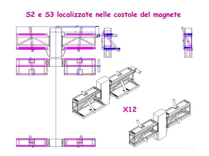 S2 e S3 localizzate nelle costole del magnete
