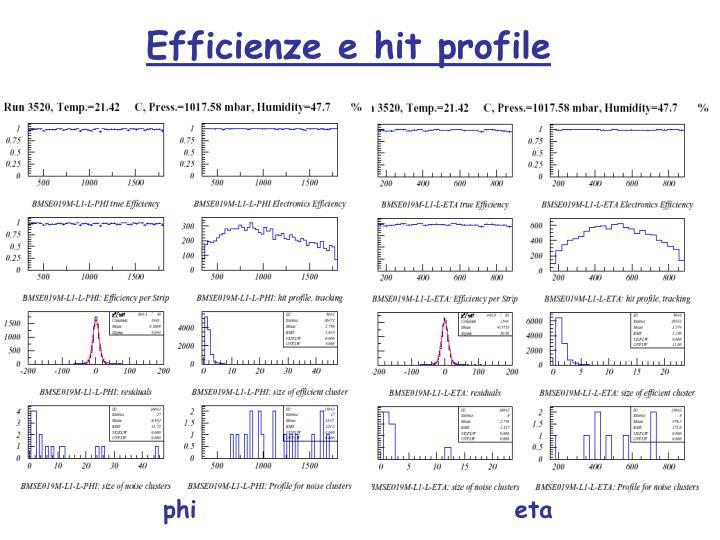 Efficienze e hit profile
