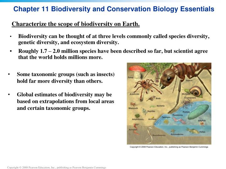 Chapter 11 biodiversity and conservation biology essentials