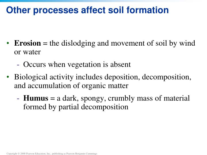 Other processes affect soil formation
