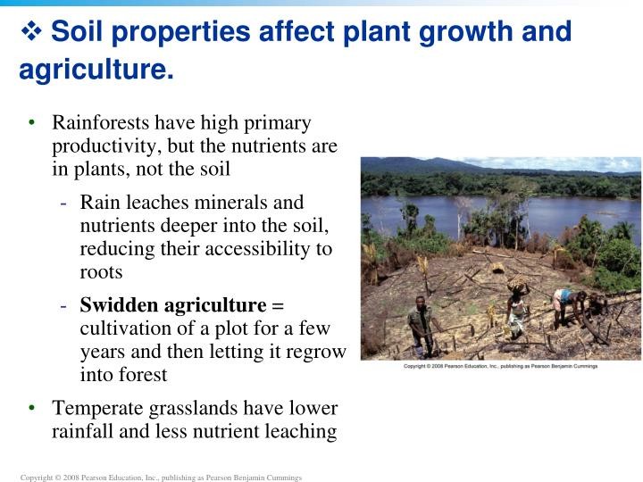 Soil properties affect plant growth and agriculture.