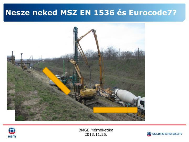 Nesze neked MSZ EN 1536 és Eurocode7?