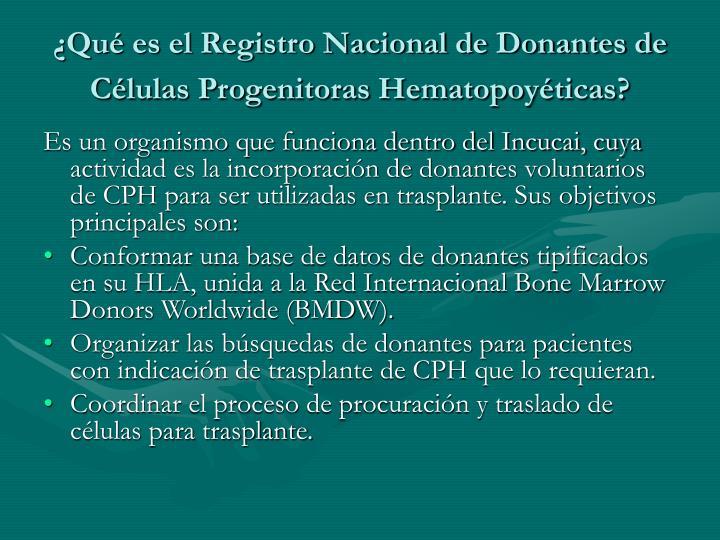 ¿Qué es el Registro Nacional de Donantes de Células Progenitoras Hematopoyéticas?