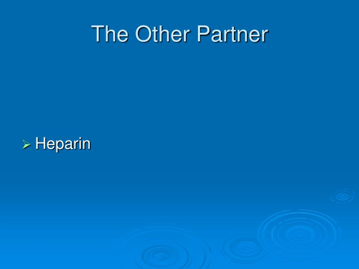 The Other Partner
