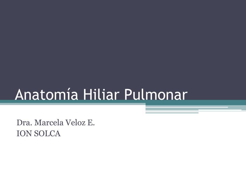 PPT - Anatomía Hiliar Pulmonar PowerPoint Presentation - ID:3793267