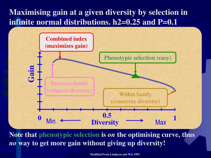 """diversity notes Hispanic attitudes/beliefs relevant to care and caring near and at the end of life """"diversity notes"""" a publication of rallying points."""