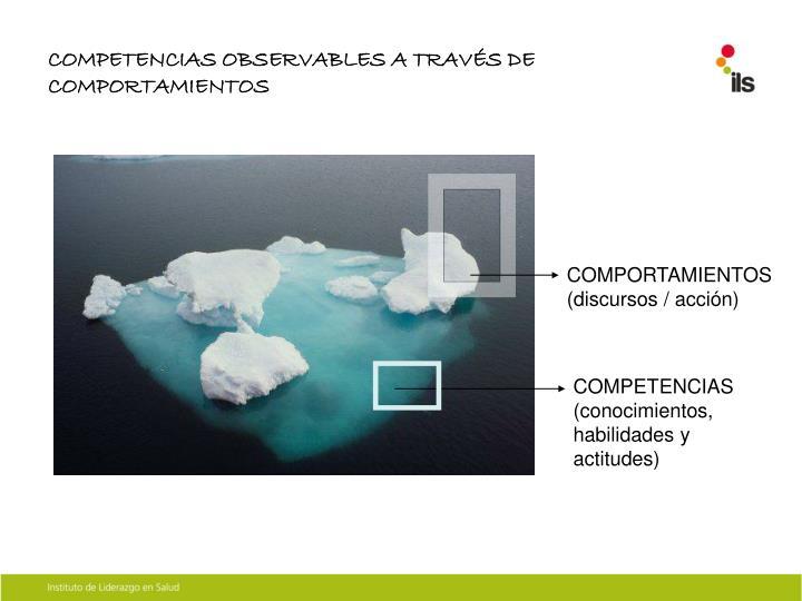 COMPETENCIAS OBSERVABLES A TRAVÉS DE COMPORTAMIENTOS