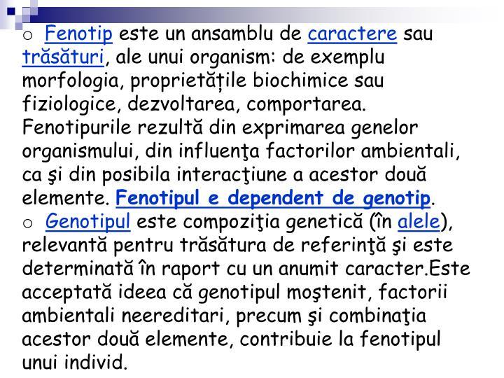 Fenotip