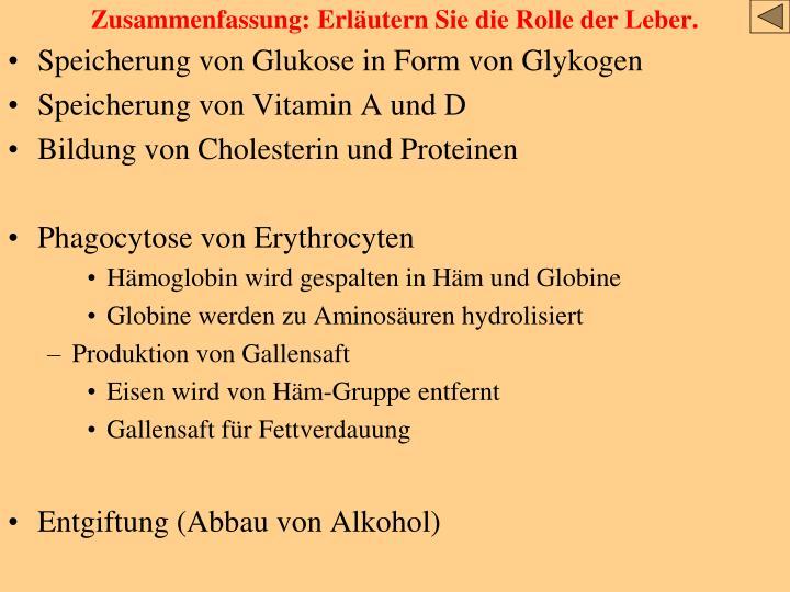 PPT - Die Leber PowerPoint Presentation - ID:3793873