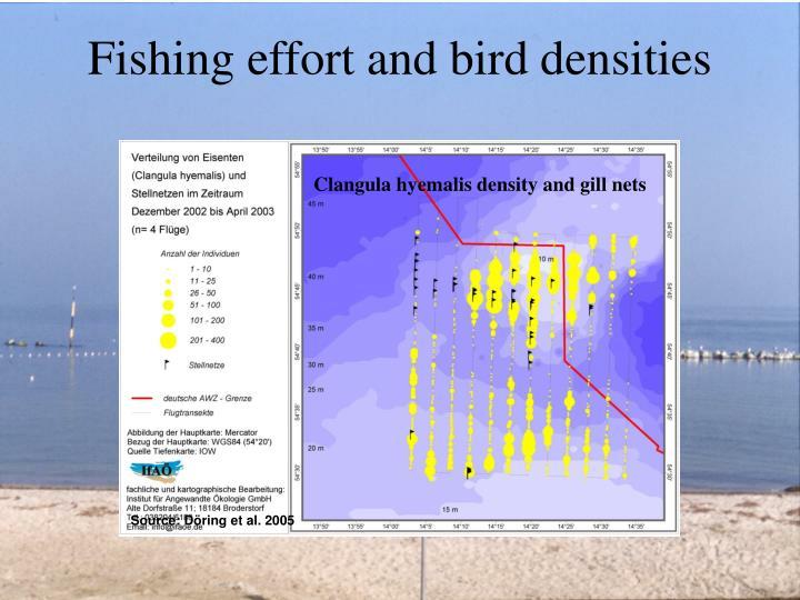 Fishing effort and bird densities