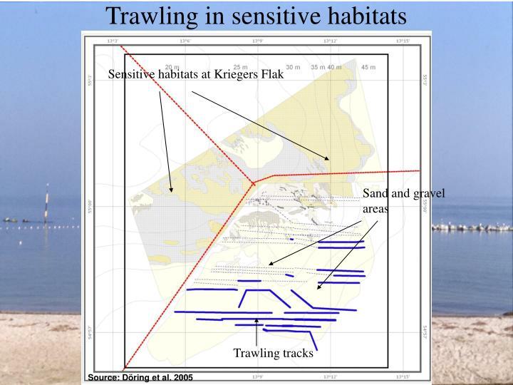 Trawling in sensitive habitats