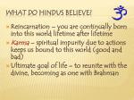 what do hindus believe1