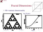 fractal dimensions1