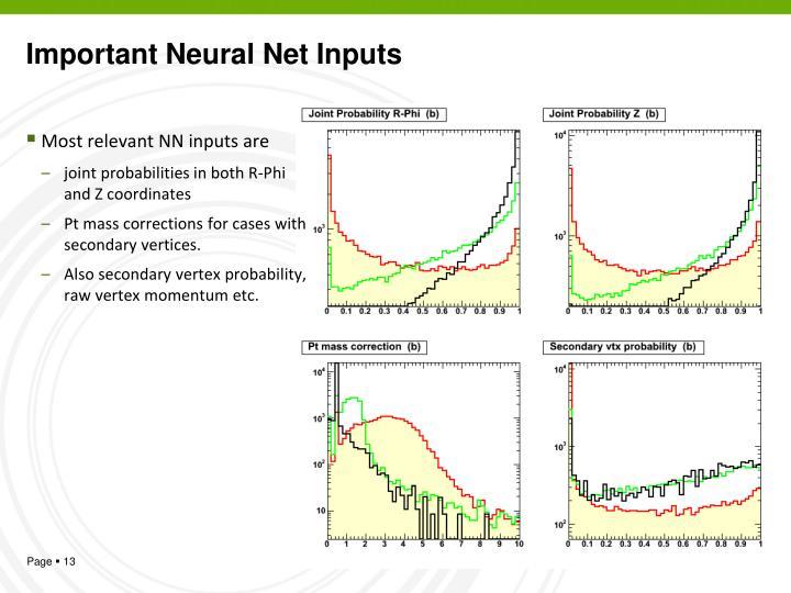 Important Neural Net Inputs