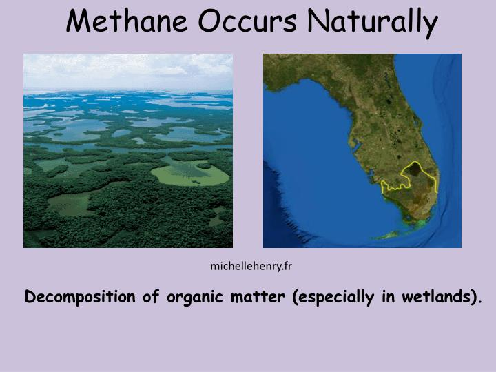 Methane Occurs Naturally