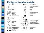 pedigree fundamentals