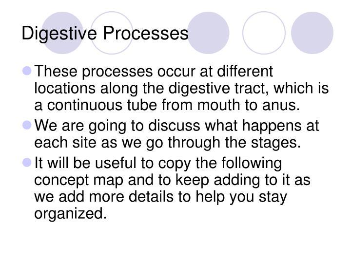 Digestive processes1