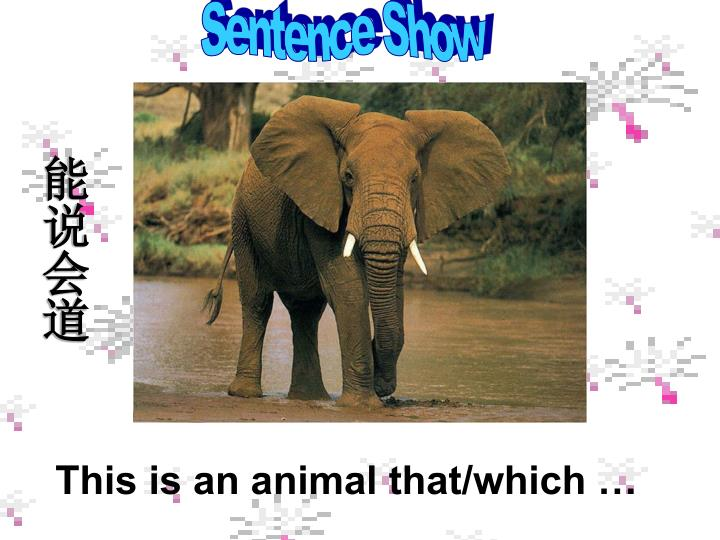 Sentence Show