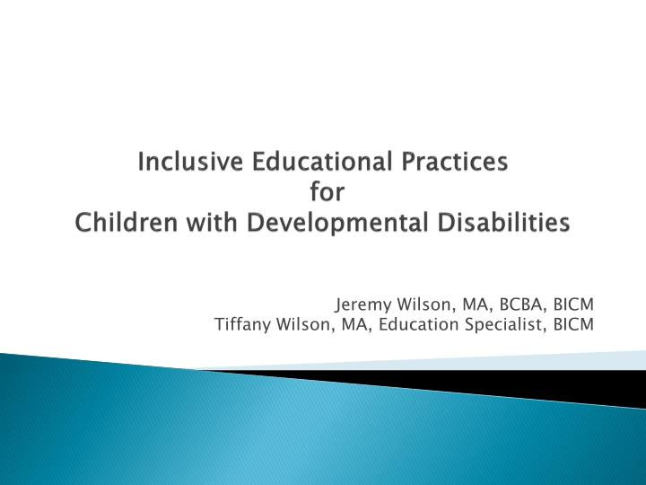 inclusive educational practices for children with developmental disabilities n.
