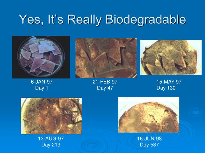 Yes, It's Really Biodegradable