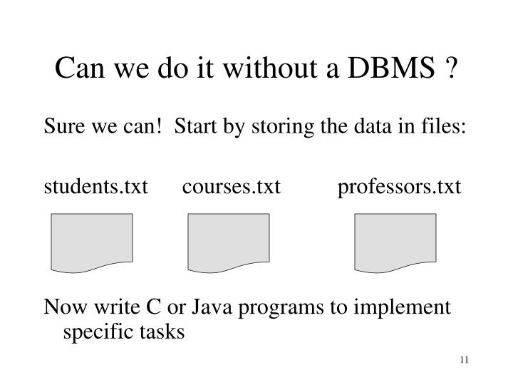 Can we do it without a DBMS ?