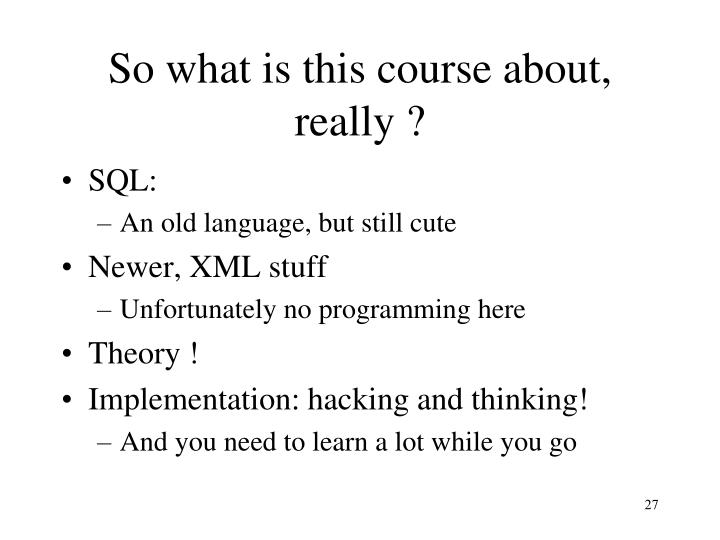 So what is this course about, really ?